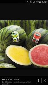 Wo Kann Man Günstig Küchen Kaufen : wo kann man gelbe wassermelonen kaufen preis ~ Bigdaddyawards.com Haus und Dekorationen