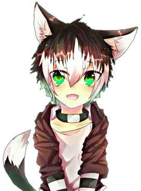 Nekochi🖤 Anime Amino