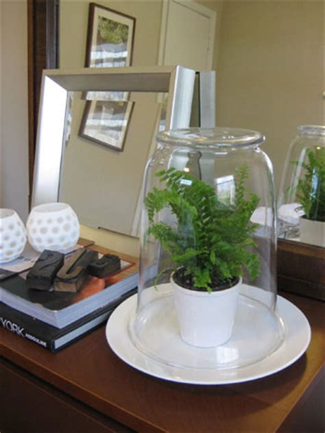 simple cheap terrarium