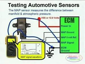 Map Sensor  U0026 Wiring Diagram