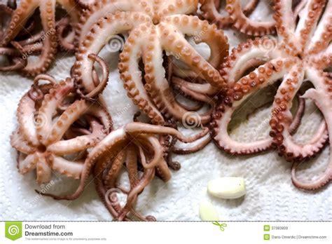 cr駱ine cuisine petits poulpes cuits images libres de droits image 37383809