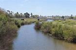 San Lorenzo River: Whats in a Watershed: Part II - Santa ...