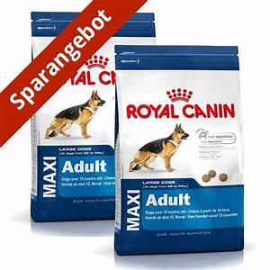 Royal Canin Maxi Adult : royal canin maxi adult g nstig kaufen bei zooroyal ~ Eleganceandgraceweddings.com Haus und Dekorationen