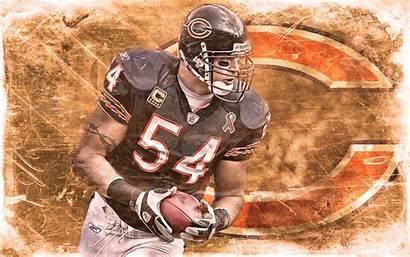 Bears Chicago Brian Urlacher Forte Matt Wallpapers
