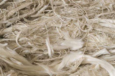 asbestosis british lung foundation