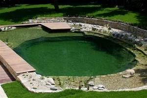 Schwimmteich Oder Pool : schwimmteich bauen schwimmteich selber bauen 13 m rchenhafte gestaltungsideen garten pooldesign ~ Whattoseeinmadrid.com Haus und Dekorationen