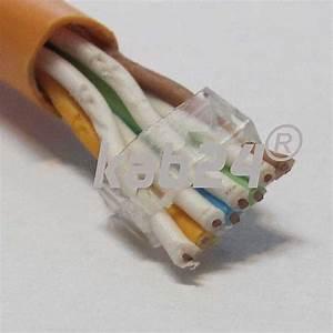Lan Kabel Unterschiede : kab24 netzwerk cat6 rj45 stecker f r cat7 verlegekabel netzwerk ~ Orissabook.com Haus und Dekorationen