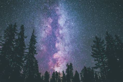 Landscape Space Stars Forest Milky Way Astrophotography