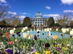 Spring bucket list 30 fun outings in virginia dc and maryland for Botanical gardens maryland