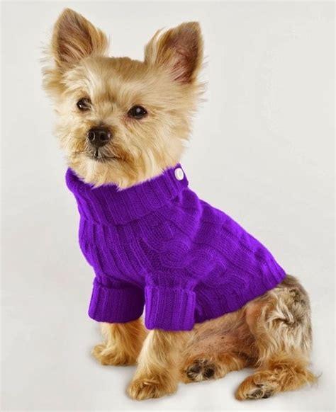 Hundepullover Für Kleine Hunde