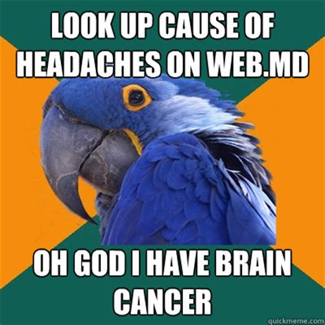 Brain Cancer Meme - look up cause of headaches on web md oh god i have brain cancer paranoid parrot quickmeme