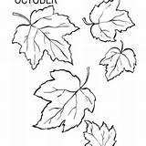 Ivy Leaves Drawing Coloring Leaf Getdrawings sketch template