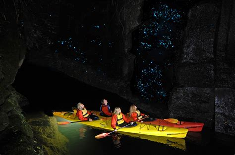 extraordinary glow worm caves   world