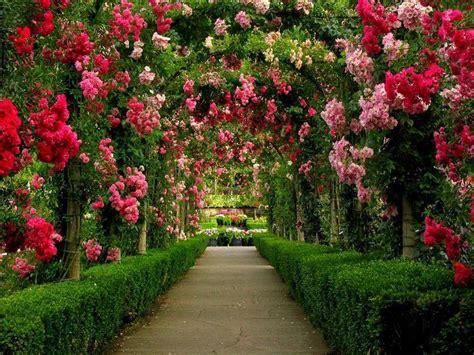 all of garden 6 amazingly beautiful gardens around the world