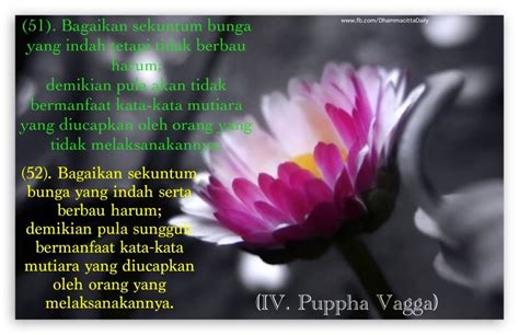 kata kata mutiara agama buddha  pernikahan kata mutiara cinta