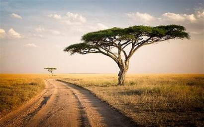 Tanzania Wallpapers Hipwallpaper Safari Background