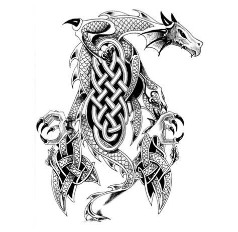 worlds  popular tattoo  female celtic dragon