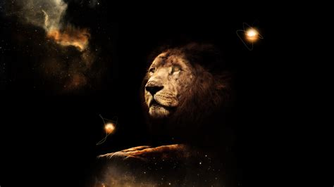 Lion Wallpaper Hd By Tooyp On Deviantart