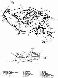 Image Result For 2000 Suzuki Grand Vitara Engine Diagram
