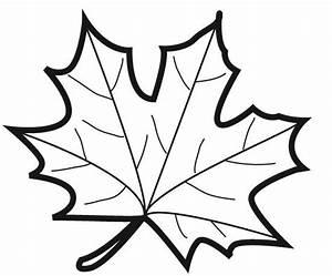Feuilles D Automne à Imprimer : coloriages feuilles d automne ~ Nature-et-papiers.com Idées de Décoration