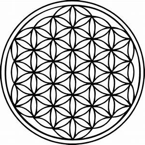 The Flower Of Life - The Open Mind