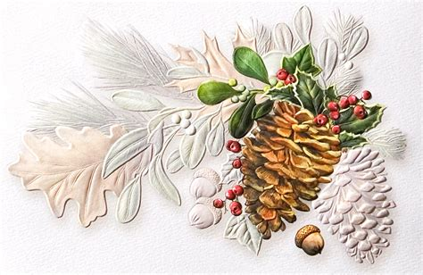 conifer christmas pine cones from cardsdirect