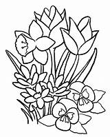 Flower Coloring Printable Pages Print sketch template