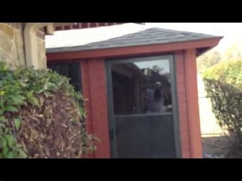 deckscapes exterior acrylic solid color deck stain russet