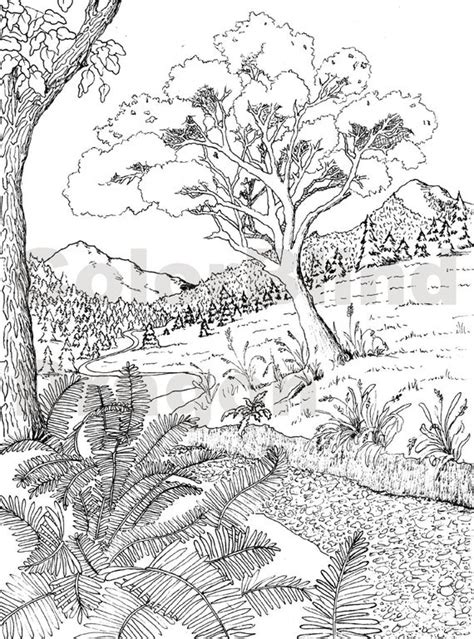 wilderness coloring page coloring pages  colorblinddragon