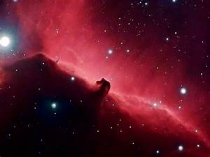 Horsehead Nebula Wallpaper 16823