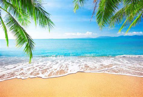 seascape photography backdrops beach photo background