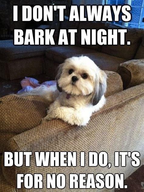I Dont Always Bark At Night Dobrador Dogs