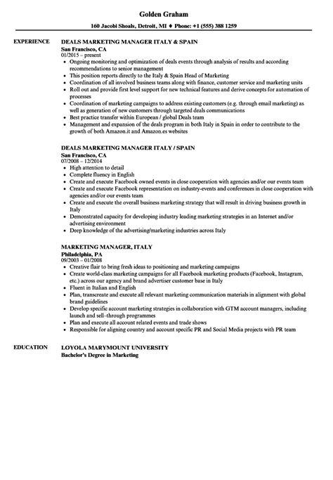 Resume In by Marketing Manager Italy Resume Sles Velvet