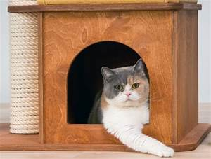 More For Cats Kratzbaum : profeline cat trees scratching posts and cat supplies ~ Whattoseeinmadrid.com Haus und Dekorationen