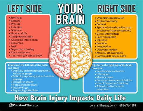 Left Side Vs Right Side Of Brain  Brain Injury Or Stroke. Mattress Store Phoenix Az Spectral Hair Loss. Home Equity Line Of Credit Maximum Amount. Laser Hair Removal Arlington Va. Texas Business Colleges Baton Rouge Bail Bonds. Inter American University Web Hosting Simple. Virtual Offices Los Angeles G M Master Card. Cooking Class In Houston Autotask Google Apps. Midwest Dental Stevens Point Wi