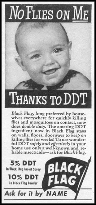 truthful ads  yesteryear  review