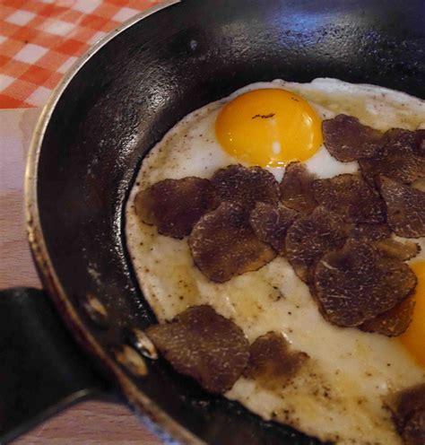 cuisiner les truffes choisir conserver cuisiner une truffe les