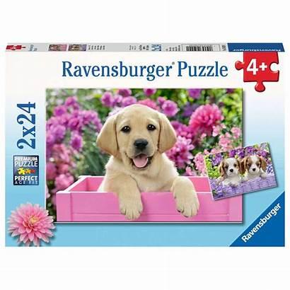 Puzzle Ravensburger Puzzel Teile Fell Hunde Freunde