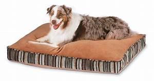 compact petmate dog bed petmate raised dog bed uk dog beds With petmate raised dog bed