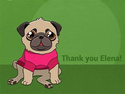 Pug Dog Thank Thanks Dribbble Animation Elena