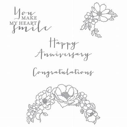 Stampin Timeless Anniversary Happy Card Stamp Cards