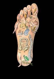 Pin By Bernie Mcgrath On Sciatic Nerve