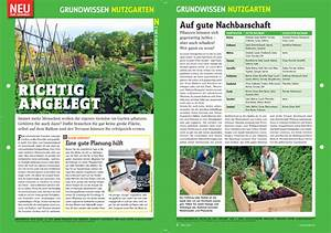 Hochbeet Aufbau Schichten : hochbeet anlegen hochbeet ~ Articles-book.com Haus und Dekorationen