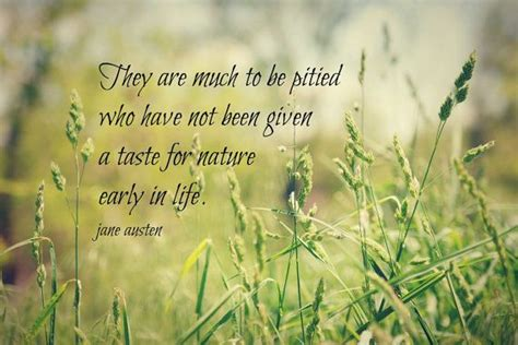 Quotes About Natures Beauty Quotesgram