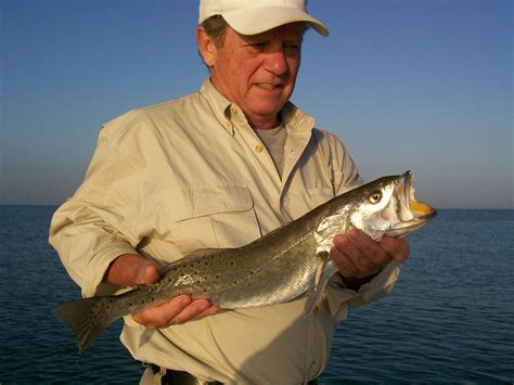 Charter Boat Fishing Clearwater Florida by Best Fishing Charters In Clearwater Ta Bay Area