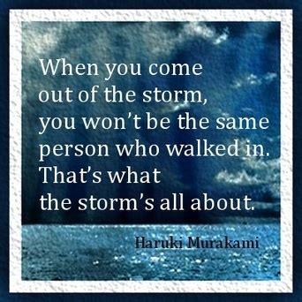 storm  wont