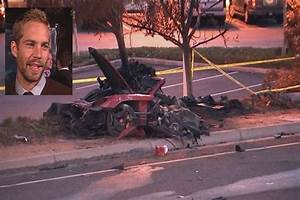 Tree Damage and Lack of Damage Proves the Paul Walker Hoax ...