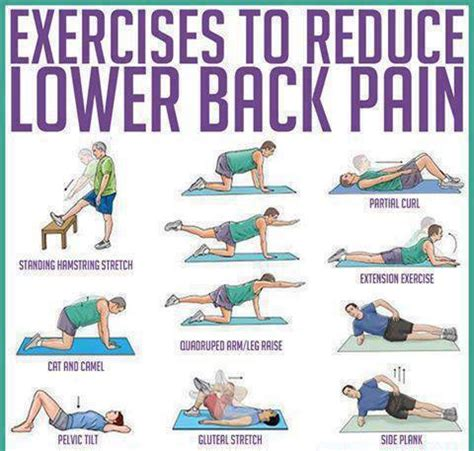 Lower Back Pain Exercises Stretches