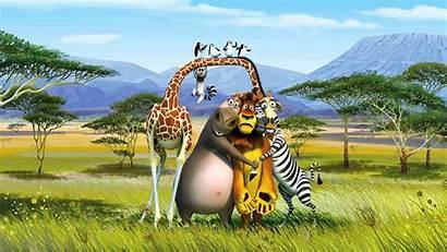 Animal Cartoon Wallpapers 1080p Animals Cartoons Animated