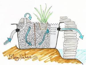 Filtration Biologique Pour Bassin A Poisson : un bassin pour le balcon ~ Premium-room.com Idées de Décoration